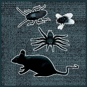 Έντομα -Τρωκτικά - Ερπετά-Σαύρες